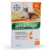 Advantage 40 pour chat 1 à 4 kg - 4 pipettes